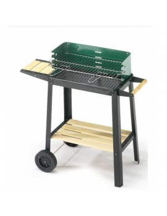 Barbecue a carbone con...