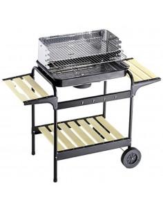 Barbecue a carbonella 60 -...